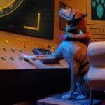Agent Toby Barks Movie Digital Download