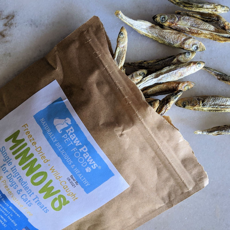 minnow fish treats for cats and dogs