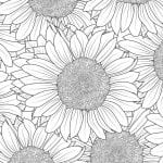 Free Printable Sunflower Coloring Page