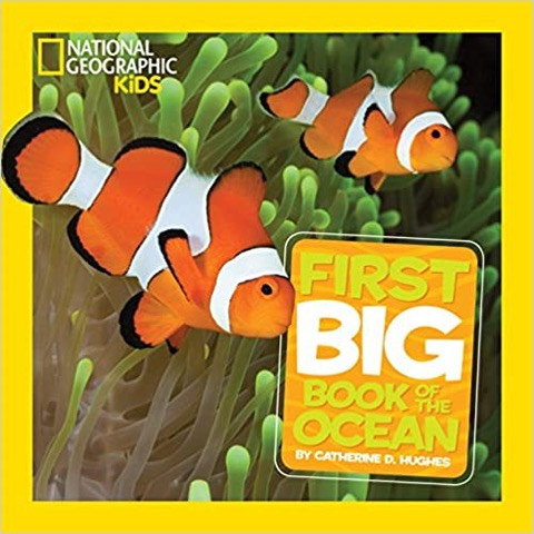 nat geo big book of the ocean