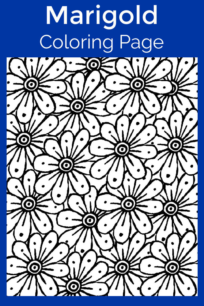 Marigold Coloring Page #DayofTheDead #FreePrintable