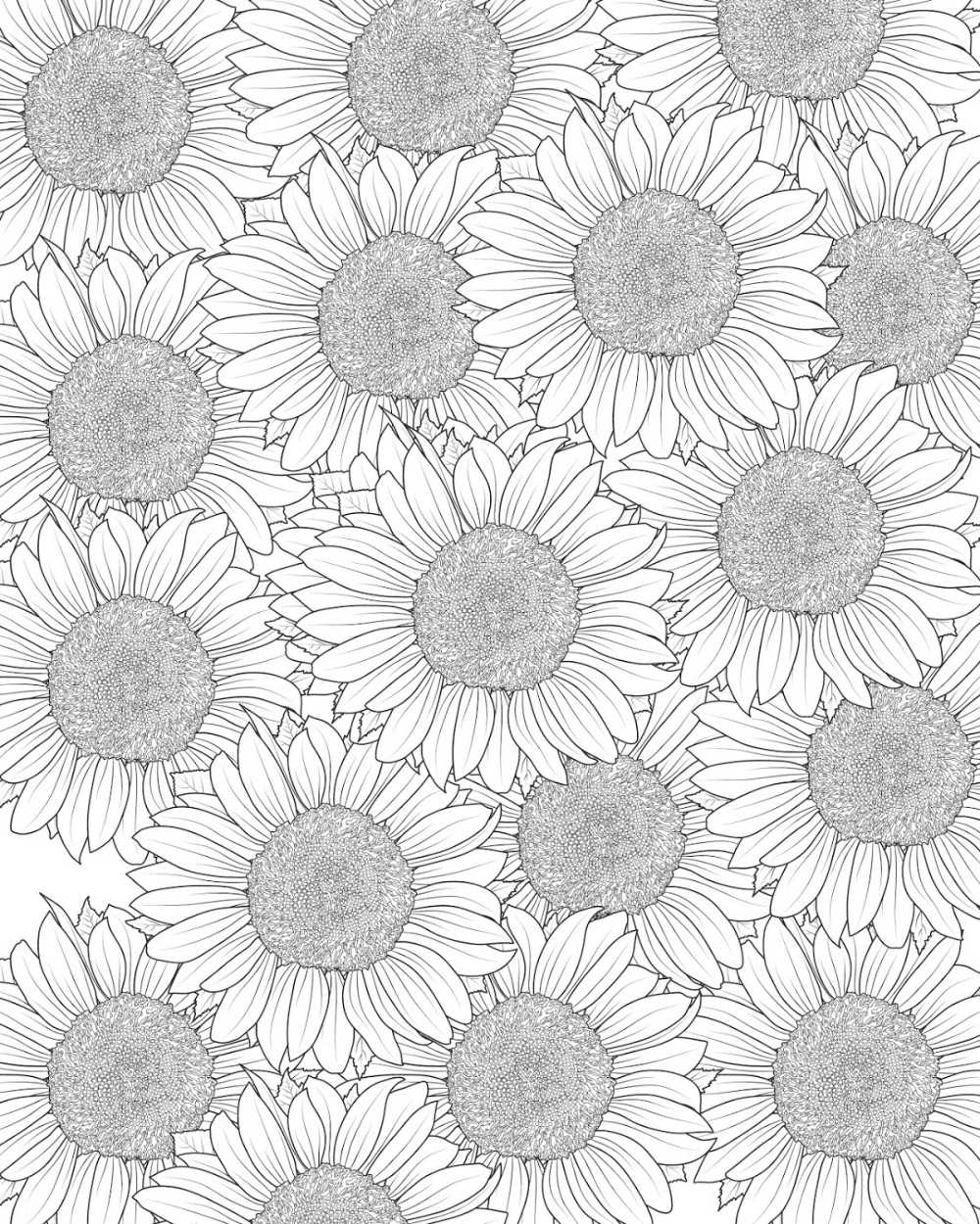 Free Printable Sunflower Coloring Page Mama Likes This