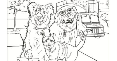 feature cats and dogs coloring
