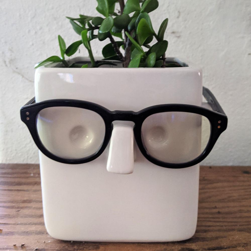 faceplant glasses holder