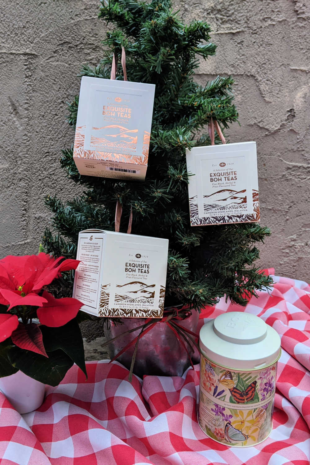 christmas tree with boh tea