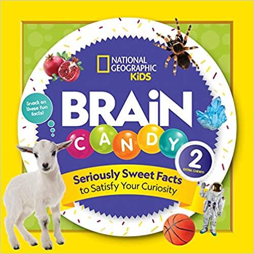 book - brain candy 2