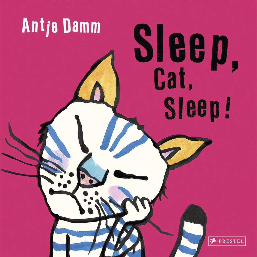 childrens book - sleep cat sleep.