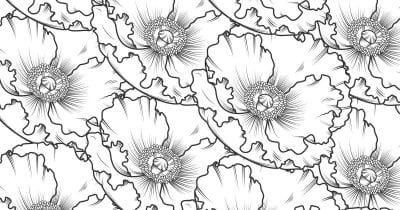 feature poppy coloring page