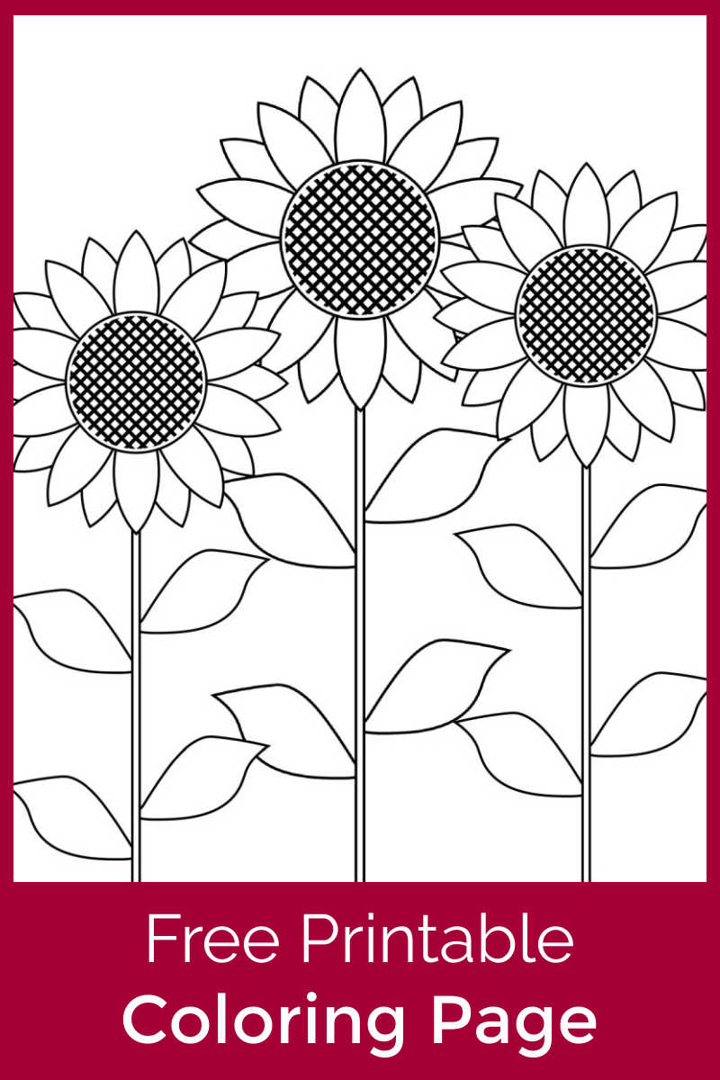 Download this free printable sunflower garden coloring page, so that your child can color this pretty Summer picture.