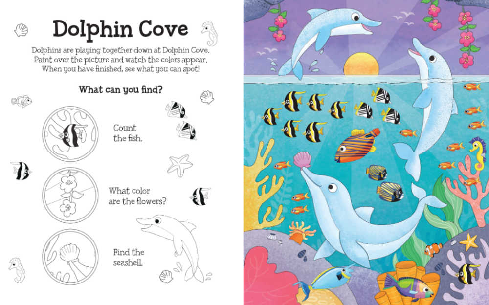 dolphin cave magical water painting book.