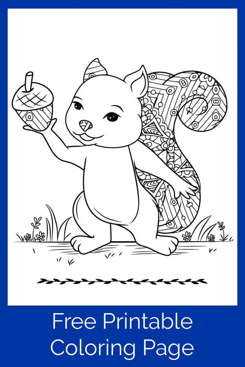 Download this free printable squirrel with an acorn coloring page, so you can enjoy this cutie who is giving the gift of an acorn.