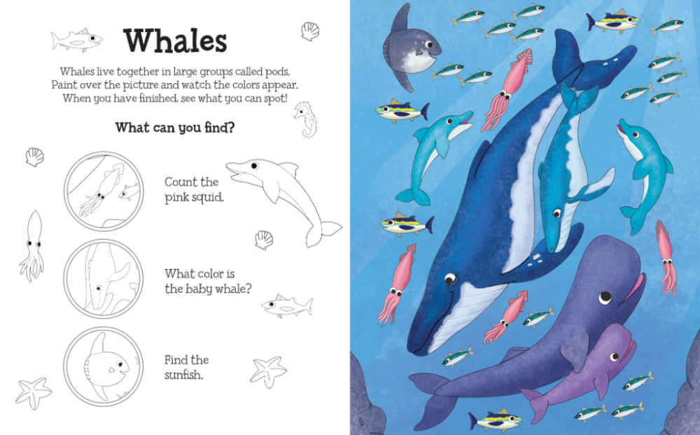 whales magical water painting book.