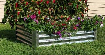 backyard galvanized garden bed.
