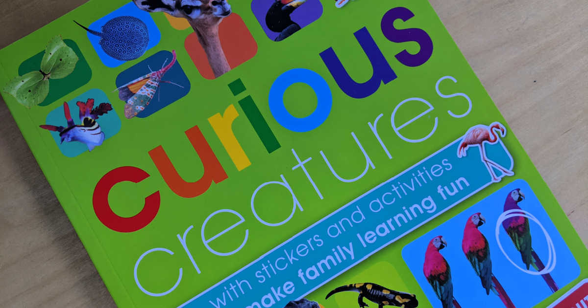 childrens curious creatures activity book.