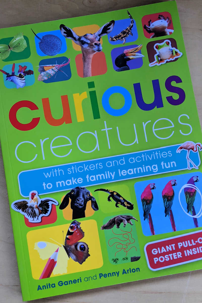 The new Curious Creatures activity book is absolutely beautiful, so your children will have lots of fun as they learn.