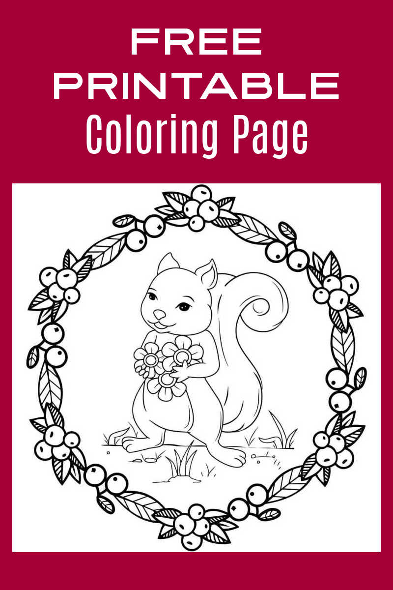 When you download this free printable squirrel holding flowers coloring page, an adult or child can have fun coloring it.