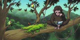 scene from jenny the chimpanzee.