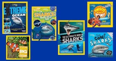 Nat Geo Kids Shark Books