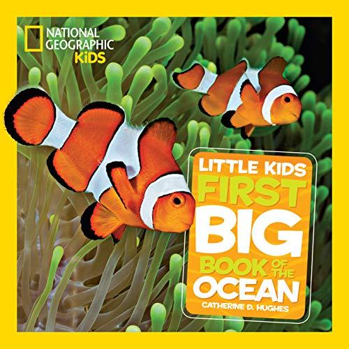 book - first ocean book