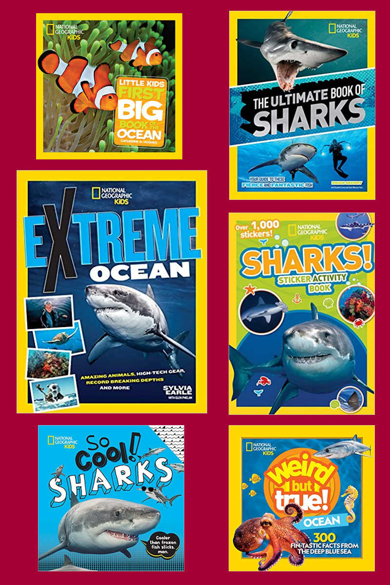 Shark Week is here, so your kids will love reading and interacting with beautifully illustrated National Geographic sharks books.