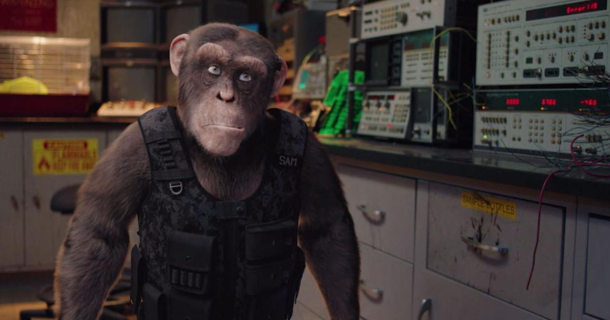c i ape movie still