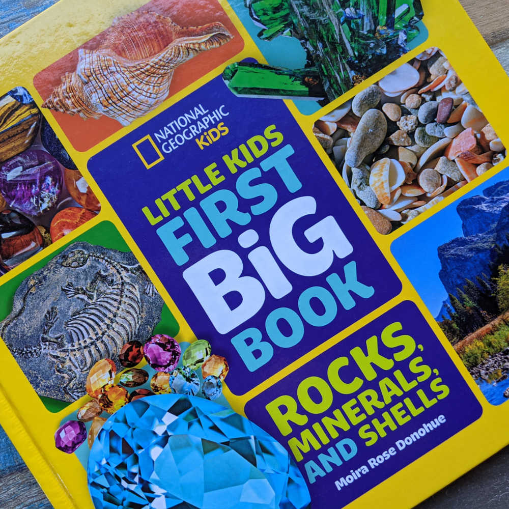 rocks minerals and shells book for kids