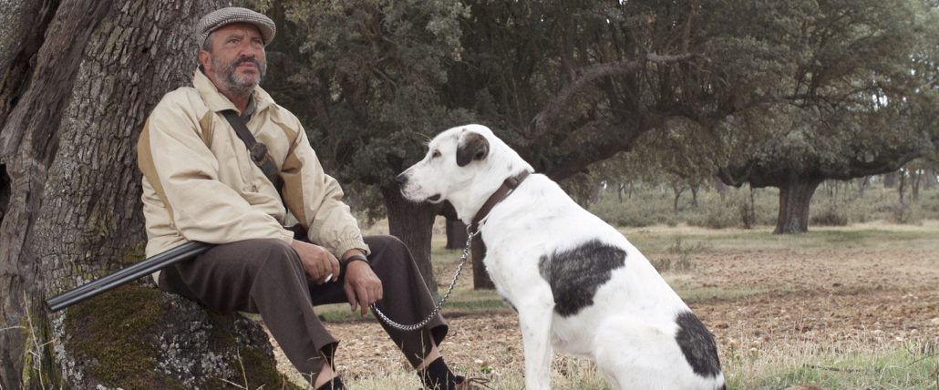 man with dog in the shepherd el pastor film