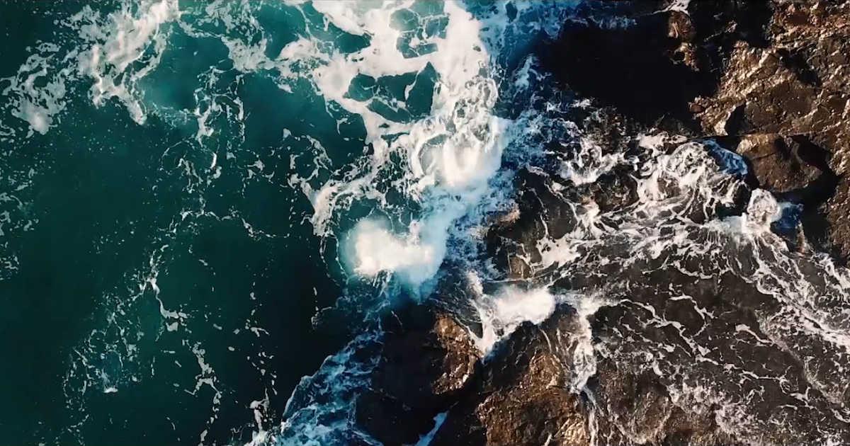 waves crashing universality of it all documentary